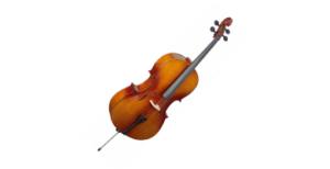 Otros instrumentos de cuerda en venta…